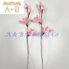 Handmade Sakura Reed Diffuser